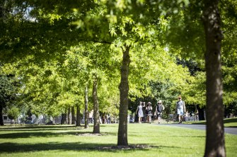 Melburnians have relied on parks in recent months while groups of people were banned from visiting pubs or homes.