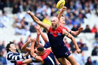 Demons Jake Lever (right) and Max Gawn spoil against the Cats.
