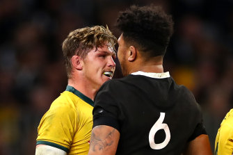 Michael Hooper's Wallabies could set off for a Bledisloe Cup series as soon as next week with Australia set to host The Rugby Championship.