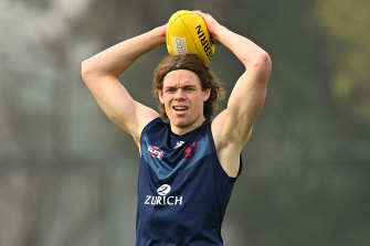 Demons forward Ben Brown is part of an ongoing debate about the team's forward set-up.