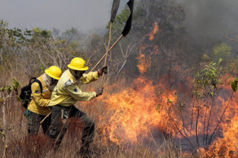 Members of the the National Centre to Prevent and Combat Forest Fires fight a fire in the Xingu Indigenous Park in Mato Grosso in Brazil.