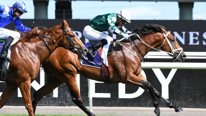 What do you give the man who has won everything? The Guineas of course