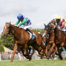 Kiwia wins second consecutive Ballarat Cup