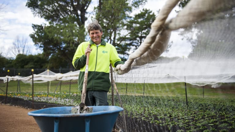 Head gardener Andrew Forster, who is in full swing as Floriade approaches.