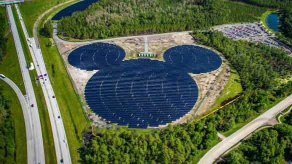 'It's a big deal for us': the Magic Kingdom is going green