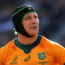 'We're not where we want to be': Woeful Wallabies suffer Bledisloe clean sweep