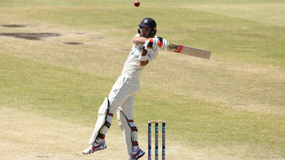 WA crushes Vics in Sheffield Shield win