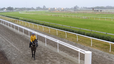 There has been a COVID-19 outbreak at the racing centre in Cranbourne.