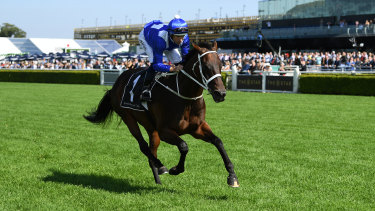 One to go: Winx will line up in race seven on the second day of The Championships.