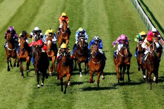 Racing.com will be the sole free-to-air source of Victorian racing from Saturday.