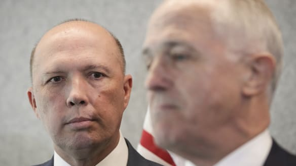 Dutton declares support for Turnbull as leadership speculation swirls
