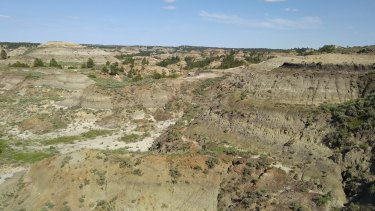 The Montana site where the fossil was found. The region is known as a rich source of fossils particularly from the Cretaceous period when T-rex and Triceratops roamed.