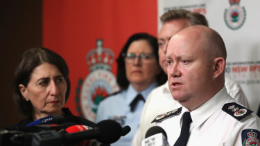 Rural Fire Service Commissioner Shane Fitzsimmons says 382 homes have been destroyed along the NSW South Coast.