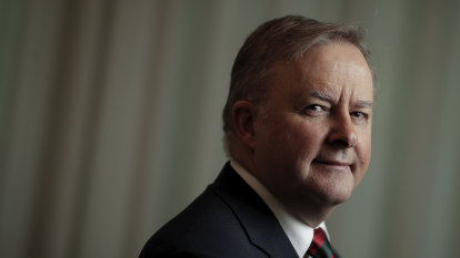 Albanese calls Labor's 45 per cent emissions target a 'mistake'