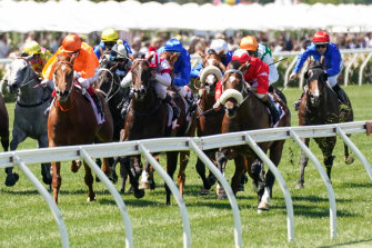 Kooled (far left) was last seen in the group 2 Sires' Produce at Flemington where he finished ninth behind Lightsaber despite starting favourite.