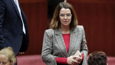 """Social Services Minister Anne Ruston says """"Australians expect people to use their own financial resources to support themselves before they call on taxpayer-funded welfare""""."""