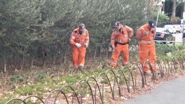 SES volunteers search for evidence at Fawkner Park in South Yarra.