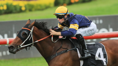 Top trainer calls for The Everest, Golden Eagle to have loot slashed