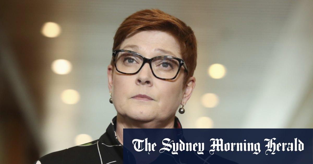 Australia demands Qatari report on 'grossly disturbing' airport body searches – Sydney Morning Herald