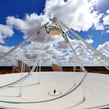 A radio telescope dish in Murchison. South Africa will host 2000 of them.