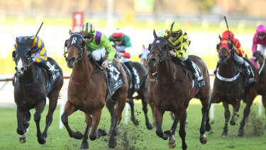 An eight-race card is scheduled for Tamworth on Thursday.