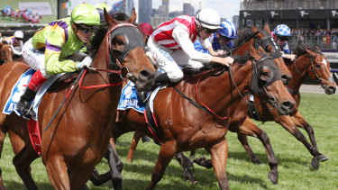 Fell Swoop, far right, finishes fifth in the Absolut Stakes, behind Thermal Current.