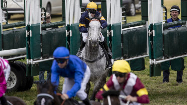 Slow starter: Chautauqua jumps from the barriers well behind the field on Saturday.