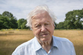 Sir David Attenborough adapted to challenging ways of working for his new series A Perfect Planet.