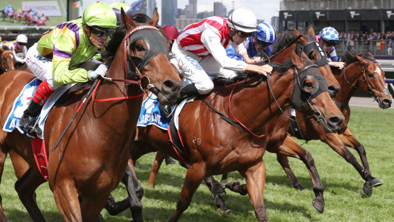 Matthew Dale says Fell Swoop, far right, would've finished first two in the Absolut Stakes but for his draw.