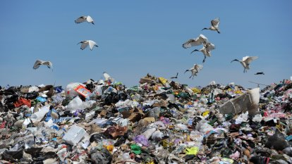 Landfill levy to double but move to slash waste could hit hip pockets