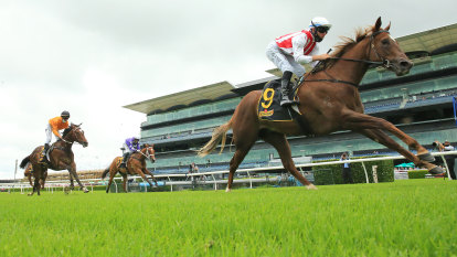 Tips and race-by-race preview for Randwick Kensington on Wednesday
