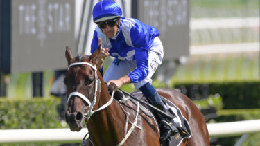 Superhorse Winx in another win.