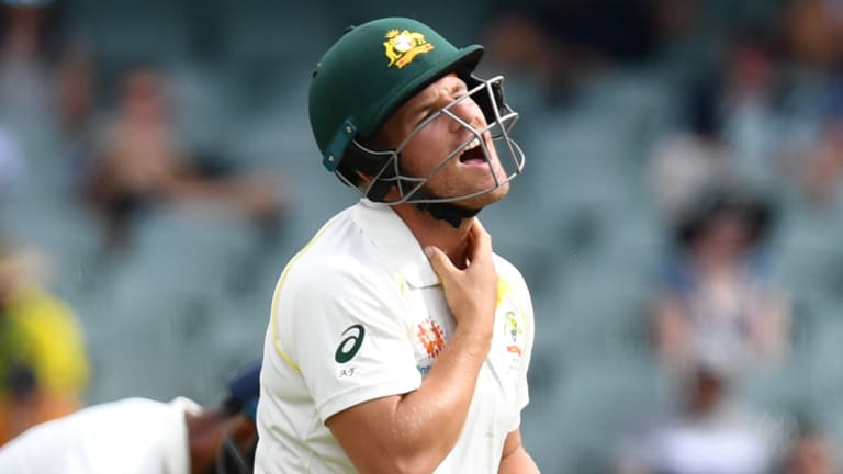 Aaron Finch feels the pain after being hit in the throat by the ball.