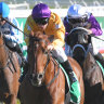 Hungry like the Wolfe: Japanese stayer keeps Cups dream alive