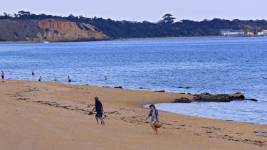 A man's body has been found in the water at Sandringham beach.
