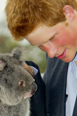 Prince Harry at Sydney's Taronga Zoo in 2003.