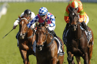 Louise Day punches Man of Peace to another Randwick win.