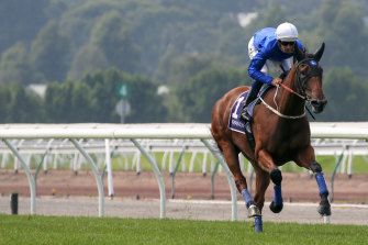 Alizee is part of a strong field for Saturday's Expressway Stakes at Rosehill.