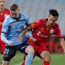 Sydney FC stop the rot against Adelaide but still searching for win