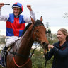 Melbourne Cup golden ticket nearly a 'plus one' after near-dead heat