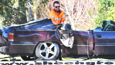A man has died after a very large tree fell on the Warburton Highway.