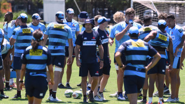 Band back together: The Waratahs' Test players are available for selection for the first time since their return.