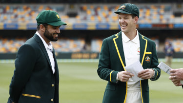 Tim Paine has restored the status of the Australian men's Test team, according to the survey.