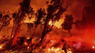 Flames from a backfire consume a hillside as firefighters battle the Maria Fire in Santa Paula, California.