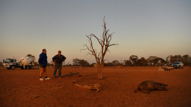A dead feral pig lies on the ground, with farmers Justin McClure from Kallara Station and Stuart Le Lievre on Stuart's Yathonga Station, looking on near the Darling River.