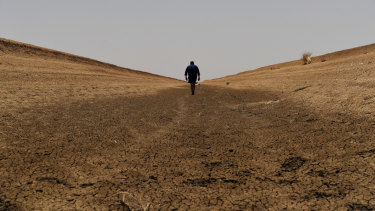 The manager of cotton farm, Darling Farms, in North Bourke, walks along a dry irrigation channel.