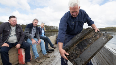 Oyster farmers, from left, Shane Buckley, Kel and Caroline Henry, and Kevin McAsh, are worried about the NSW government's investment in one of their competitors in the industry.