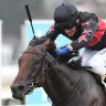 Away Game not a Magic Millions surprise to Maher