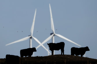 More than 150 jobs are at risk because a new wind farm project is using imported steel.