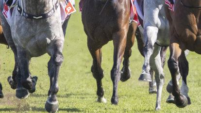 Tips and race-by-race preview for Quirindi on Monday